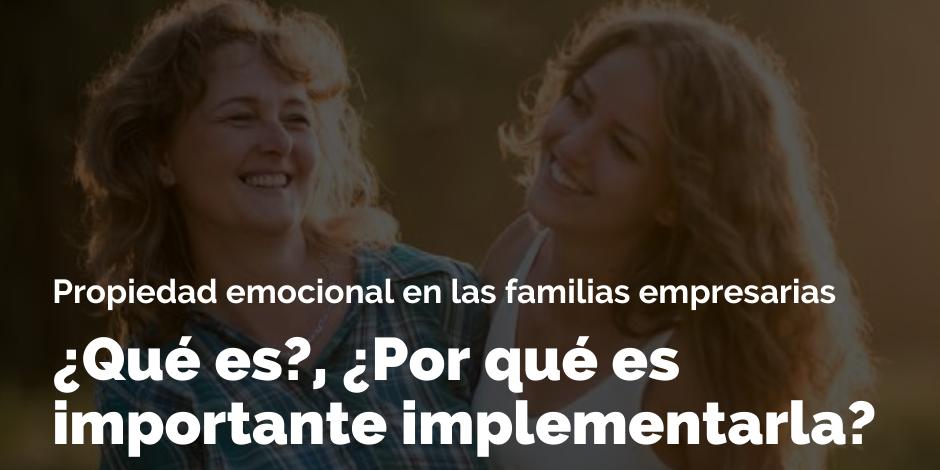 Propiedad emocional en las familias empresarias | Blog